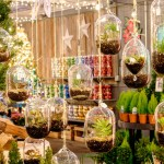 Christmas Hanging Terrariums