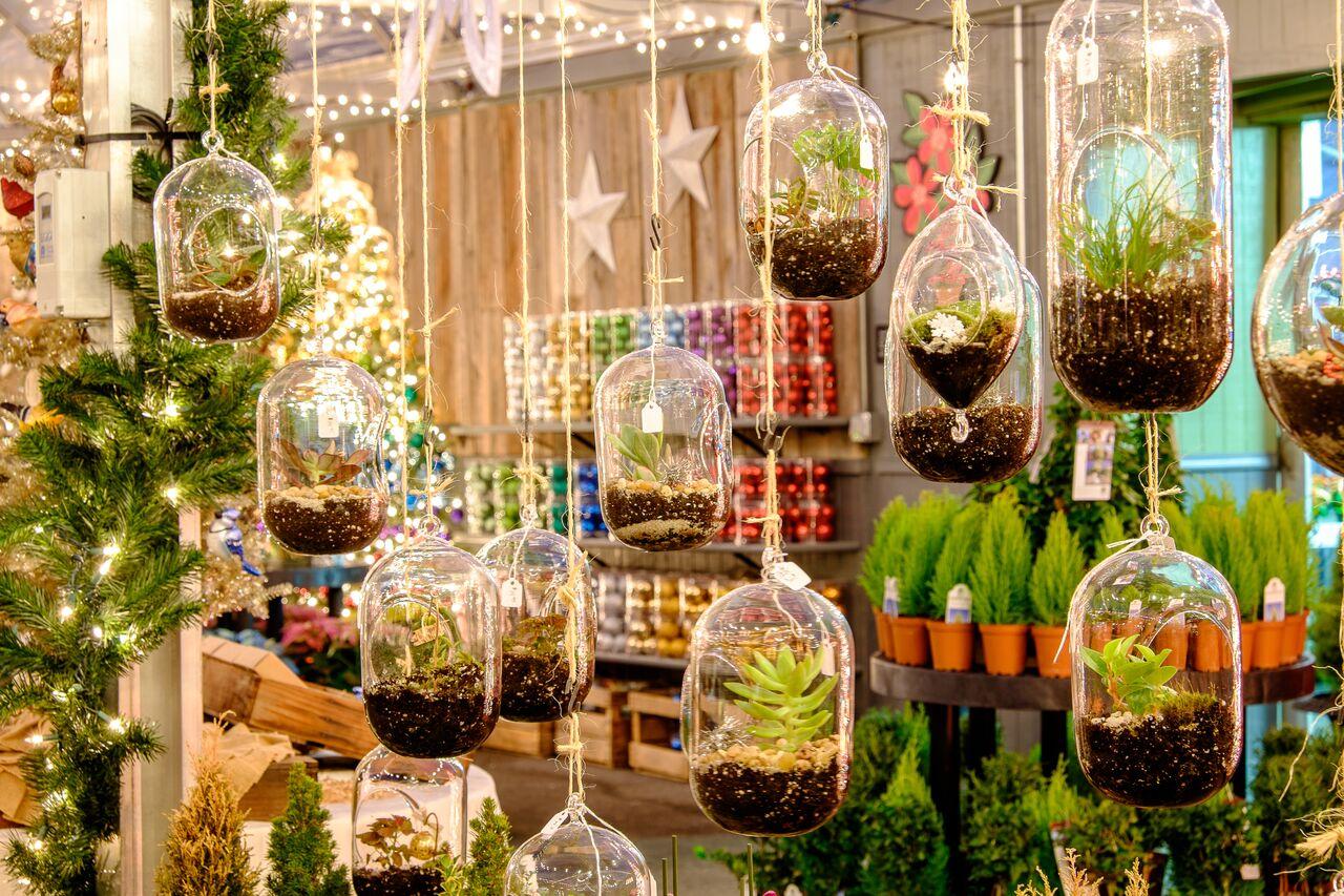 christmas hanging terrariums